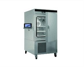 德国MEMMERT环境测试箱256